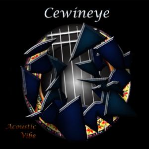 cewineye-cd